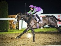 SOAR ABOVE wins at Kempton on 14th December. Tim Clark (3) up.